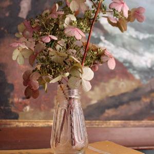 Stylingtips Hortensia Mooi Wat Bloemen Doen