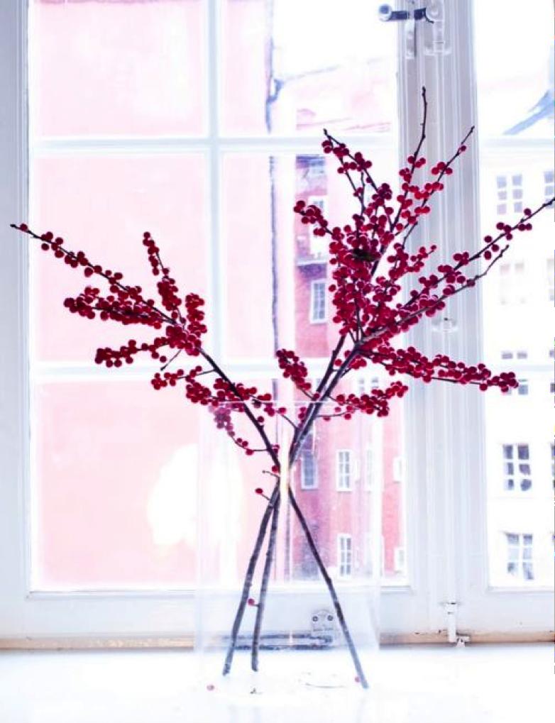 Ilex Kerst Mooiwatbloemendoen