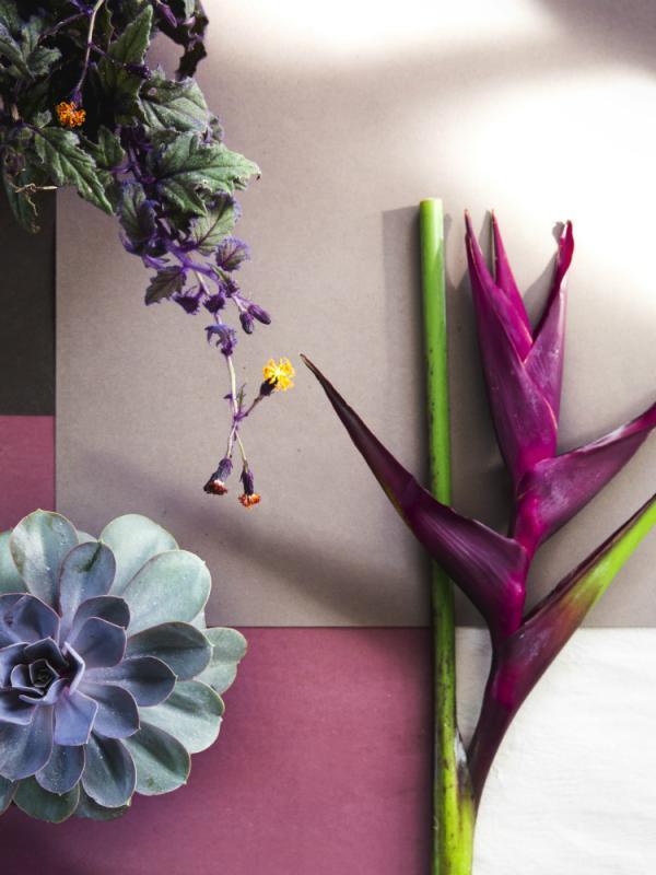 Grafische bloemen - Mooiwatbloemendoen.nl